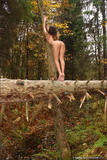 Vika in Autumnk546k62w0y.jpg